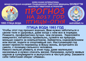 _прогноз1993