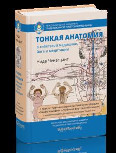 19 tonkaya_anatomiya1