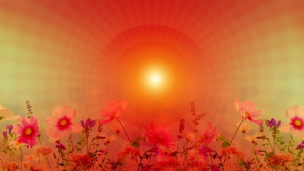 meditation-3265849_1280